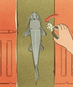 Prepping/FoodStorage | Aquaponics World View | Scoop.it