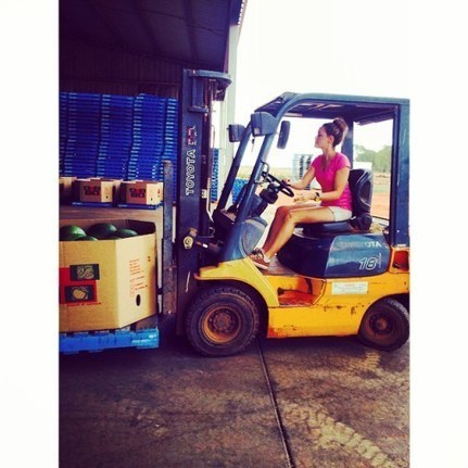 Sarıyer Kiralık Forklift | Kiralık Forklift Hizmetleri 0532 715 59 92 | Scoop.it