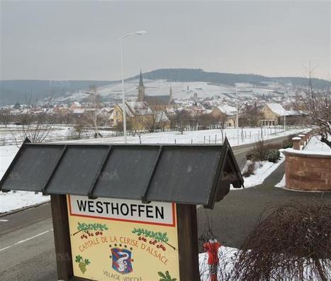 Mossig et Hasel | La commune dévoile son projet de PLU | Molsheim Wasselonne Marlenheim | Scoop.it