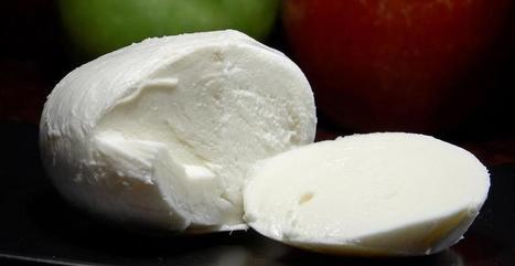 Mozarella, le fromage préféré des américain | The Voice of Cheese | Scoop.it