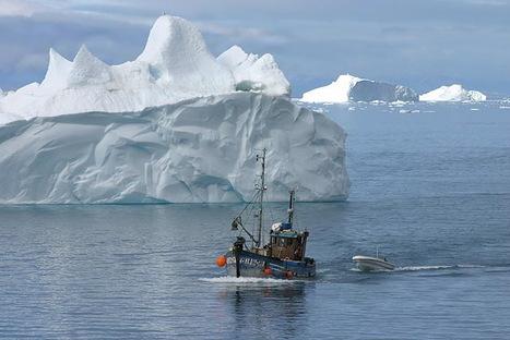 position euh... fantasque d'Ilulissat sur le parcours prévu de Tara | Hurtigruten Arctique Antarctique | Scoop.it