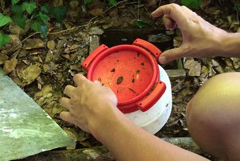 Tourisme : Le géocaching : une chasse aux trésors version 2.0 - Routard.com | Géocaching et tourisme | Scoop.it