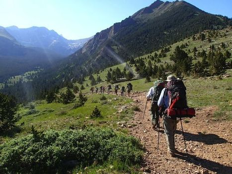 Troop 98: Scouting for adventure | what to do in New Mexico | Scoop.it