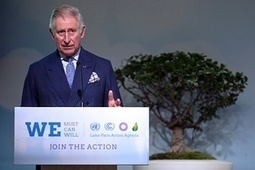 No plan B for climate change without forests, Prince Charles tells Paris summit | GarryRogers Biosphere News | Scoop.it