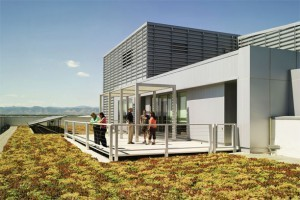 Commitment to Green Building Practices Pays Off | sustainable architecture | Scoop.it
