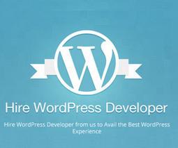 WordPress Developer Calgary | Website Development & Design Agency | MediaLabz-Wordpress Website Design in Calgary | Scoop.it