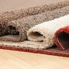 Mr Hollands Carpet