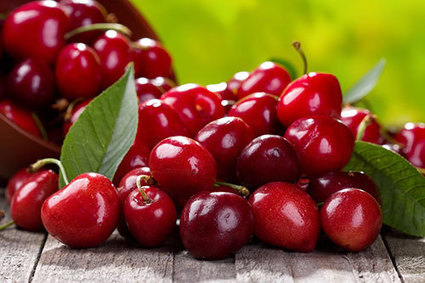 Eat cherries for a healthy heart, a good night's sleep and more : Disease Proof | Your Food Your Health | Scoop.it