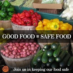 FDA Food Safety Rules Threaten to Crush the Good Food Movement - Cornucopia Institute | Vertical Farm - Food Factory | Scoop.it
