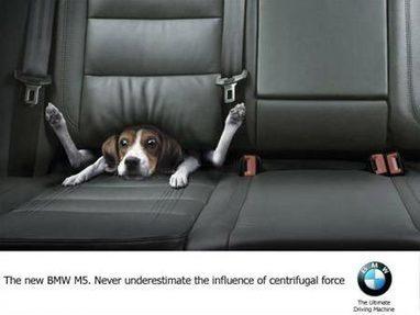 La publicidad me hace reír | Roastbrief | Publicidad & Marketing | Scoop.it