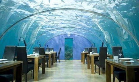 L'hôtel sous l'eau Poseidon | Le blog des tendances | Hospitality Sur et Sous l'eau | Scoop.it