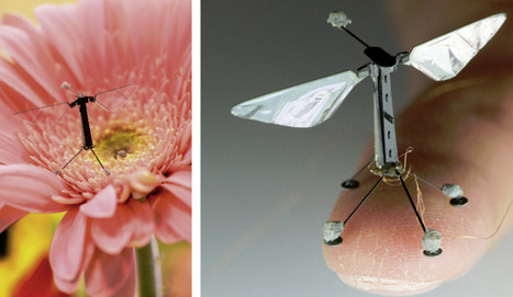 Bioinspired drones of the future | KurzweilAI | Robots in Higher Education | Scoop.it