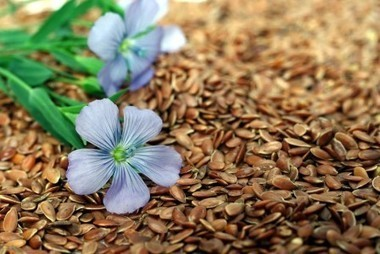 Flaxseed Can Prevent And Kill Breast Cancer, Meta-Analysis Reveals   TheSleuthJournal   Health   Scoop.it