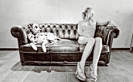Su Sogno Ribelle: Rosso Dalmata | Music News Italia | Scoop.it
