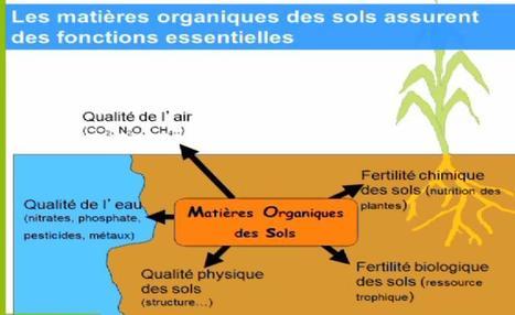 Stocker du carbone dans les sols agricoles : pourquoi et comment ? Claire Chenu | Le flux d'Infogreen.lu | Scoop.it