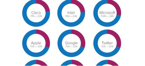 Huit infographies qui montrent la faible diversité chez Google, Facebook et compagnie | Ce qui peut intéresser Madagascar sur le web | Scoop.it
