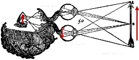 Digital Dualisms of the Real » Cyborgology | Cyborgs_Transhumanism | Scoop.it