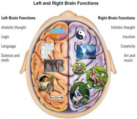 Are You Left Brain or Right Brain Dominant? | ChurchMag | Learn Your Brain | Scoop.it