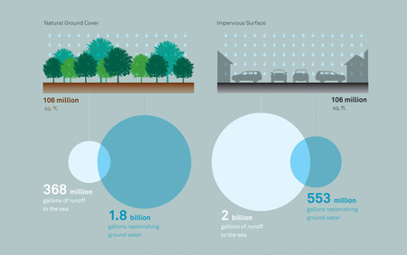 Water, water everywhere? | green infographics | Scoop.it