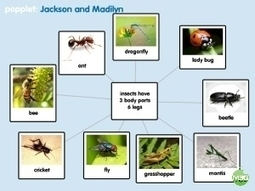 Creating Word Webs With Popplet | Teaching the 4 C's with BYOT | Scoop.it