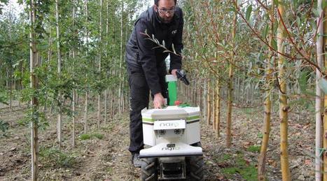 Machinisme agricole. Oz : le robot qui désherbe tout seul les parcelles - Ouest-France | Agroéquipement | Scoop.it