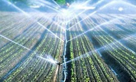 Agriculture : La Tunisie pourrait bientôt rationner l'eau d'irrigation | water news | Scoop.it