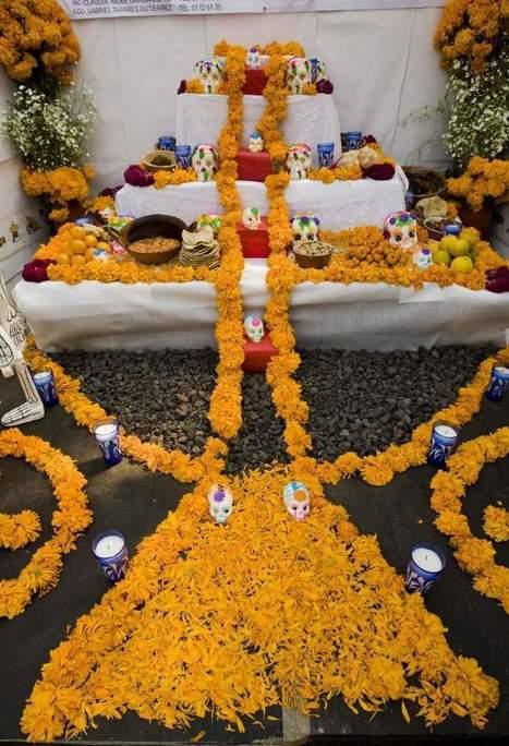 Día de Muertos – Google Doodle: 5 Datos Curiosos que Tienes que Saber | Dia de los muertos | Scoop.it