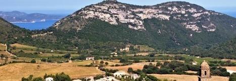 L'hôtel La Palma, idéal pour un voyage en Corse | Actu Tourisme | Scoop.it