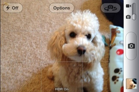 How to Take Better iPhone Photos | GottaBeMobile | How to Use an iPhone Well | Scoop.it