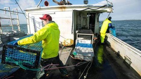WCB reduces rate for fisheries industries - TheChronicleHerald.ca | Aquaculture Directory | Scoop.it