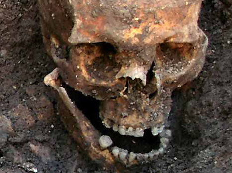 Richard III gravesite may include medieval knight - NBCNews.com (blog) | Biosciencia News | Scoop.it