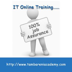 Software Testing Online Training   Tambareni Academy   Software Testing Training   Scoop.it