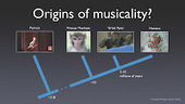 Can the origins of music be studied at all? | Psychology and Brain News | Scoop.it