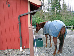 Fall Checklist for Preparing Your Horse Property for Winter | Today's Horse Sense | Scoop.it