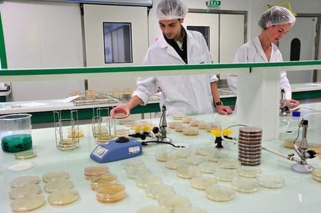 Le Léha, outil de veille de la qualité sanitaire - Le Journal de Vitré   Carambar - Veille réglementaire   Scoop.it