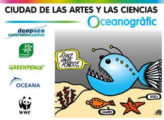 Sitio oficial Oceanografic Ciudad de las Artes y las Ciencias de Valencia | environnement, | Scoop.it