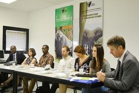 Lutte contre le braconnage : Une semaine au cœur de la forêt gabonaise - Gabonreview.com | Actualité du Gabon | | Confidences Canopéennes | Scoop.it