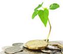 """Dossier : Quels financements pour le green business ?   """"Emplois verts et éco-activités""""   Scoop.it"""