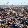 Landfill pollution