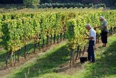 Taxation du vin: le monde viticole interpelle le gouvernement | Flash Addictions | Scoop.it