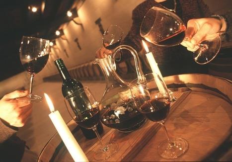 Les viticulteurs gagnent le .vin et .wine | Cep de vigne | Scoop.it
