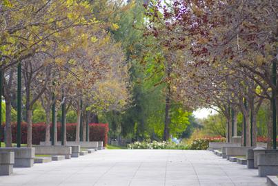 Graduate Studies Office - Caltech Graduate Studies Office | Learning is Life | Scoop.it