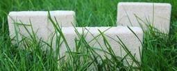 Des champignons pour remplacer le plastique | Société durable | Scoop.it