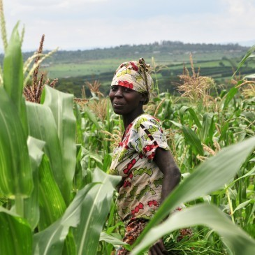 Climate change and poverty reduction | Climate Change, Agriculture & Food Security | Scoop.it