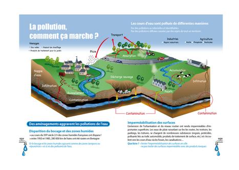 schema_pollution.jpg (998x708 pixels) | svt pollution de l'eau et risque pour la santé mars 2013 | Scoop.it