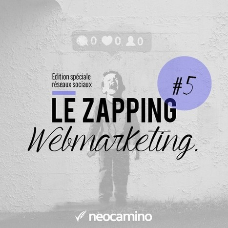 Le Zapping Webmarketing : Episode 5 | Actualités Web Marketing | Scoop.it