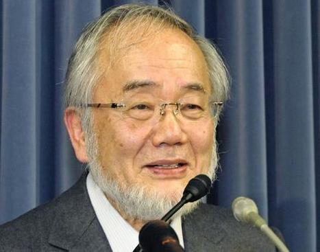 Japanese wins Nobel Prize for autophagy discovery- Nikkei Asian Review | Research Biotechnologies | Scoop.it