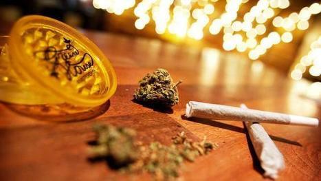 Amsterdam sluit weer coffeeshops bij scholen | Drugsbeleid | Scoop.it