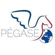 Pégase, la page de l'expatriation et des Français de l'étranger | La Gestion de Carrière | Scoop.it