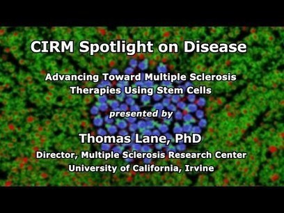 Advancing Toward Multiple Sclerosis Therapies Using Stem Cells | Stem Cells & Tissue Engineering | Scoop.it